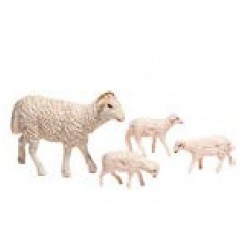 Oveja y corderos