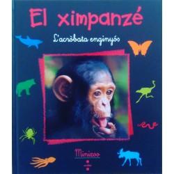 El ximpanzé. L'acròbata enginyós