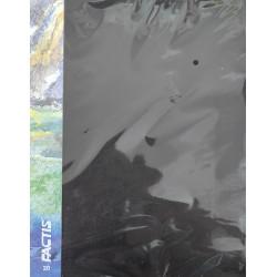 Carpeta 20 fundas  - Factis